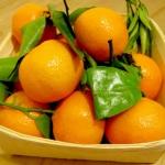 Budín de Mandarinas