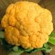 Tarta de coliflor