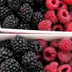 Bavarois de frutos rojos